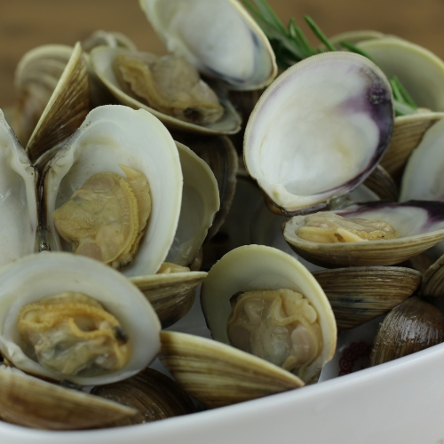 Sewansecott Middleneck Clams