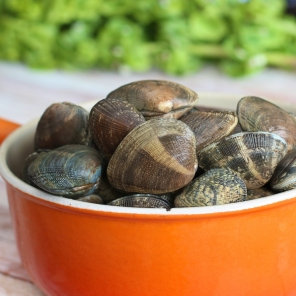 Taylor Shellfish Manila Clams